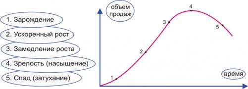 Продвижение монопольной компании продвижение web сайтов в г санкт петербурге по недорогим ценам